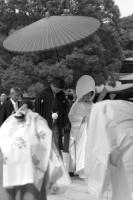 LEICA M9-P + MS-OPTICAL-R&D SONNETAR 50mm F1.1 MC Meiji Jingu Shrine , Tokyo – 2013/09/14