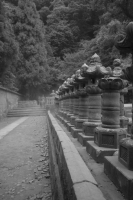LEICA M9-P + MINOLTA M-ROKKOR 28mm f2.8 Fukushoji Temple ruins , Kagoshima – 2013/10/04