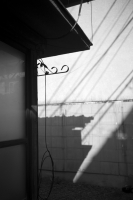 LEICA M9-P + Leitz Summaron 3.5cm f3.5 Yanaka , Tokyo – 2014/04/05
