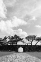 LEICA M9-P + Leitz Summaron 3.5cm f3.5 Nago , Okinawa – 2014/06/26