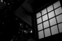 LEICA M9-P + VOIGTLANDER ULTRON 35mm f1.7 Aspherical(L mount) Meiji Jingu , Tokyo – 2015/05/18