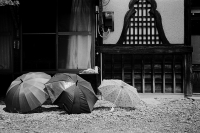 LEICA M4-P + VOIGTLANDER NOKTON vintage line 50mm f1.5 Aspherical VM + Kodak TRI-X 400 Akazawa Juku , Yamanashi - 2015/08/18