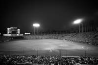 LEICA M(Typ262) + VOIGTLANDER COLOR-SKOPAR 21mm F4P Jingu Stadium , Tokyo – 2017/07/09