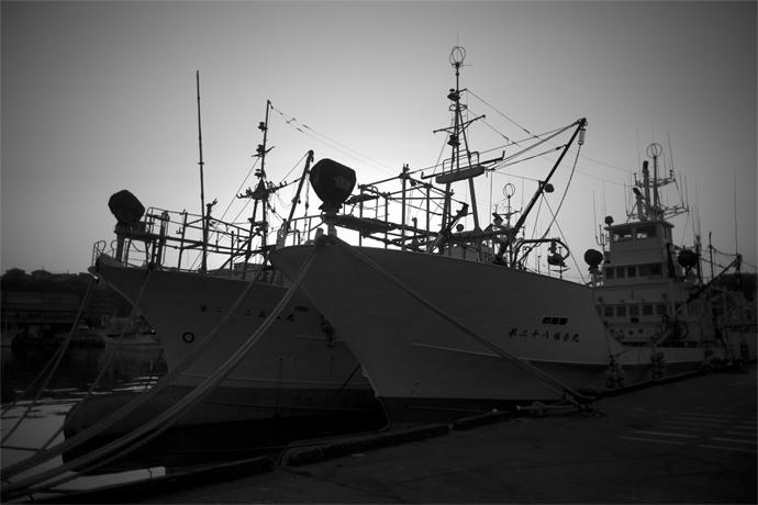 LEICA M9-P + CANON 25mm F3.5 Onahama Port , Fukushima – 2015/04/18